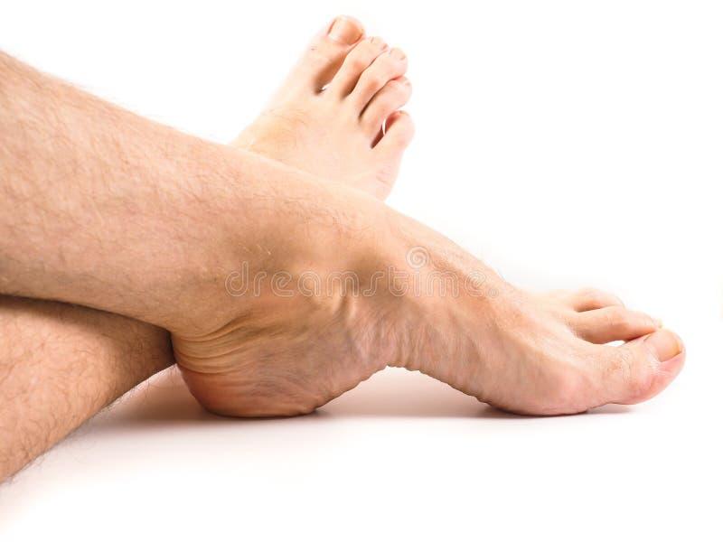Håriga ben och fot av den manliga personen som vilar en vit royaltyfria bilder