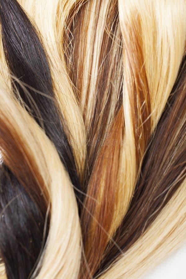 Hårtextur för verklig kvinna Inslag för mänskligt hår, torrt hår med silkeslena volymer Verklig europeisk tapettextur för mänskli royaltyfri fotografi