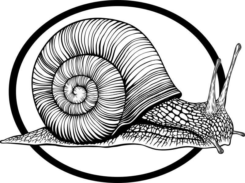 Hélice libre illustration