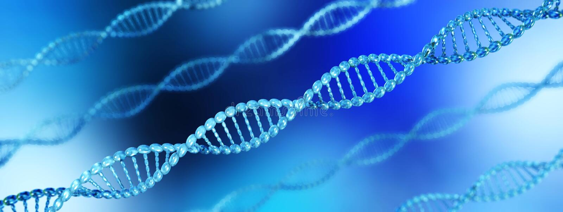 Hélice d'ADN chromosome illustration stock