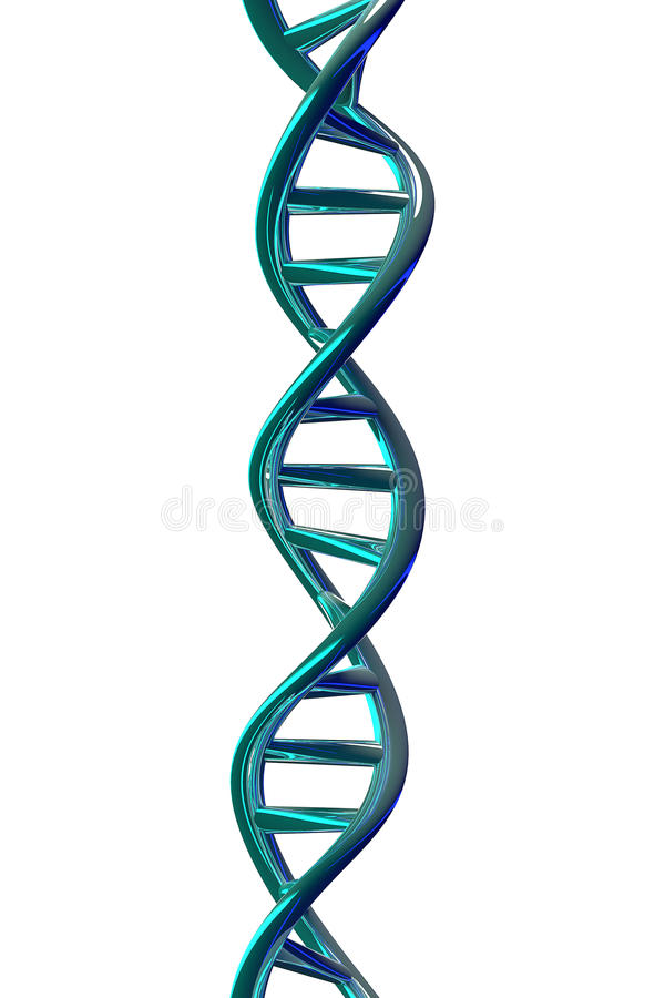 Hélice de la DNA aislada en el blanco, representación 3D ilustración del vector