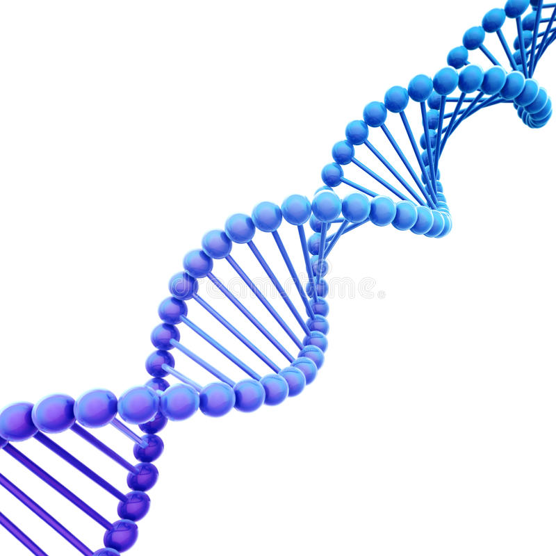 Hélice diagonale d'ADN de bleu sur le blanc photographie stock libre de droits