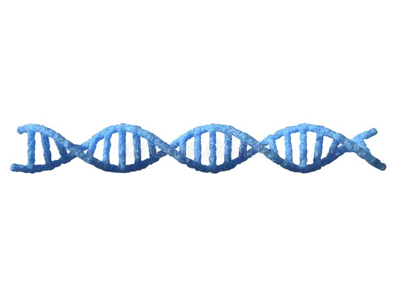 Hélice do ADN isolada no fundo branco ilustração do vetor