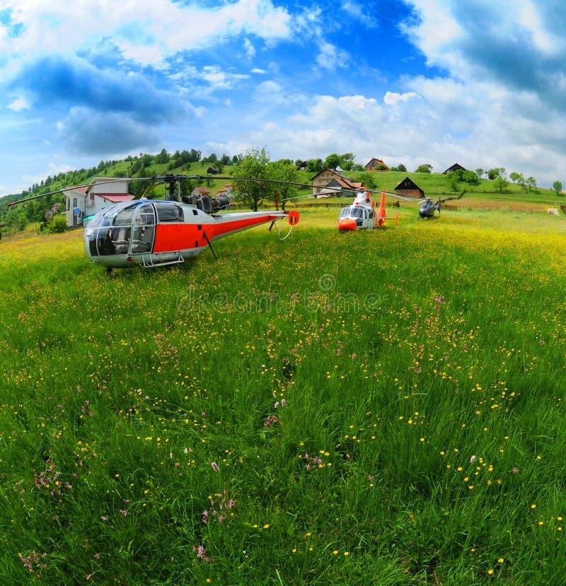 Hélicoptères sur la zone d'été photographie stock libre de droits