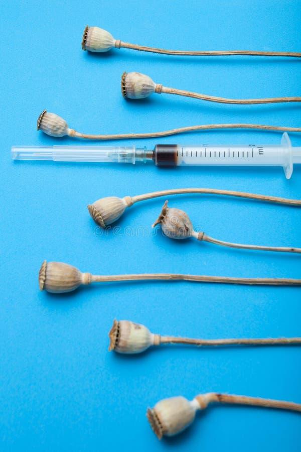 Héroïne dans une seringue et un opium sur un fond bleu Production de drogue illégale à partir des têtes de pavot image libre de droits