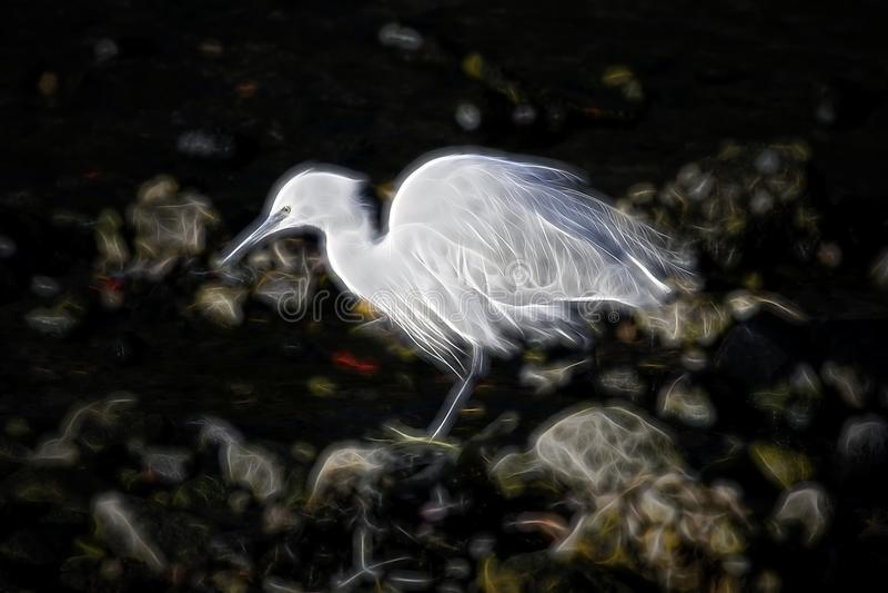 Héron blanc de Digital illustration de vecteur
