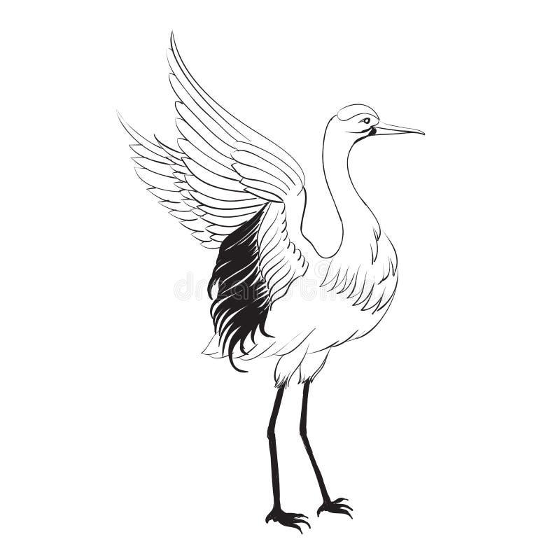 Héron d'isolement au-dessus du blanc. illustration de vecteur