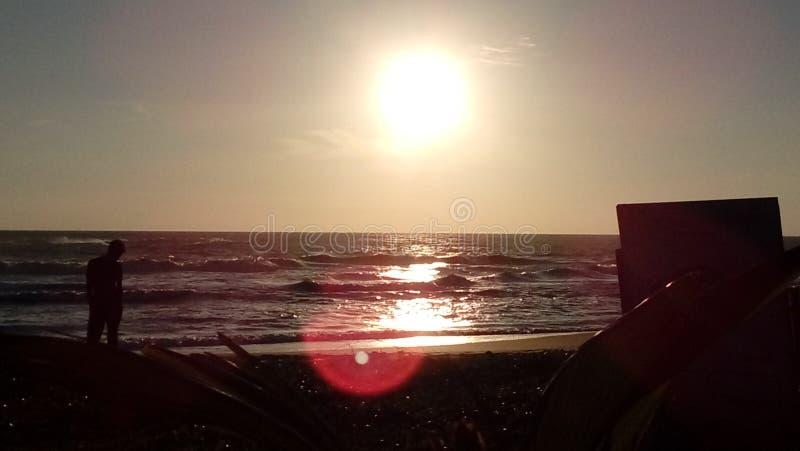 Hêtre du Sri Lanka photo stock