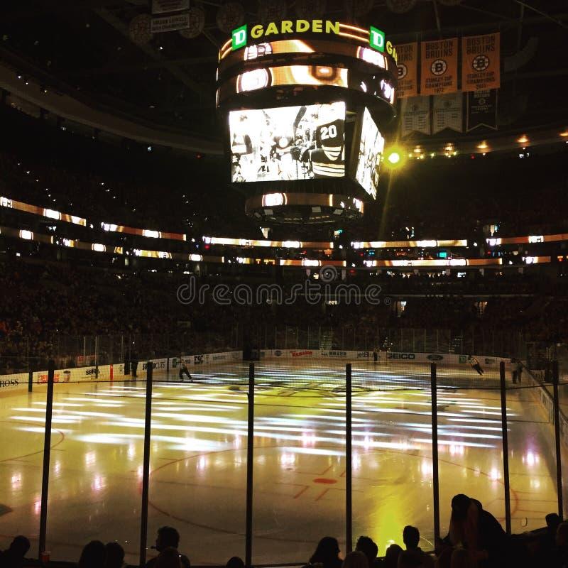 Hóquei dos Boston Bruins fotos de stock