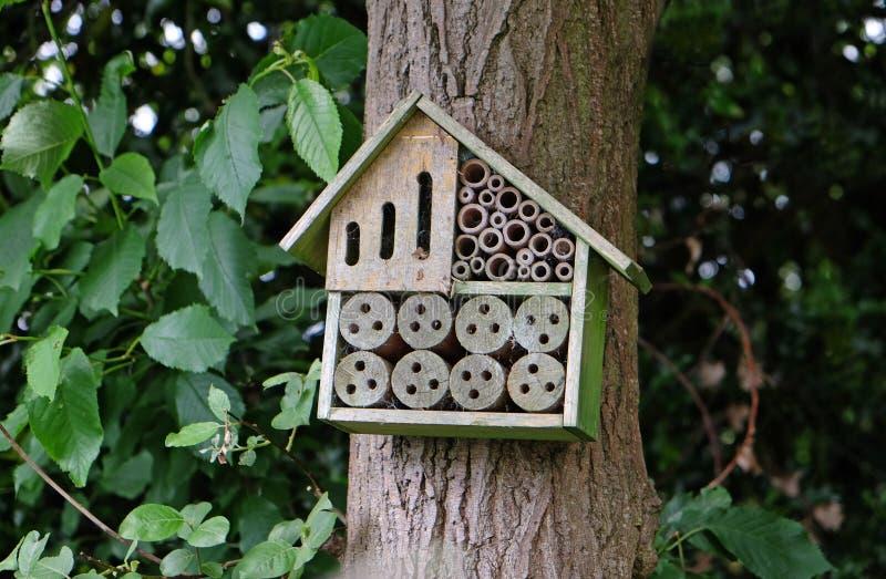 Hôtel d'insecte dans le secteur de région boisée image libre de droits
