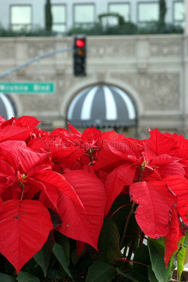Hôtel de Beverly Wilshire image libre de droits