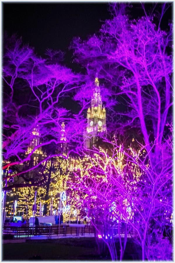 Hôtel de Ville à Vienne, Autriche sur Noël Ève photos stock