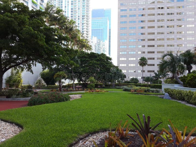 Hôtel intercontinental de Miami image libre de droits