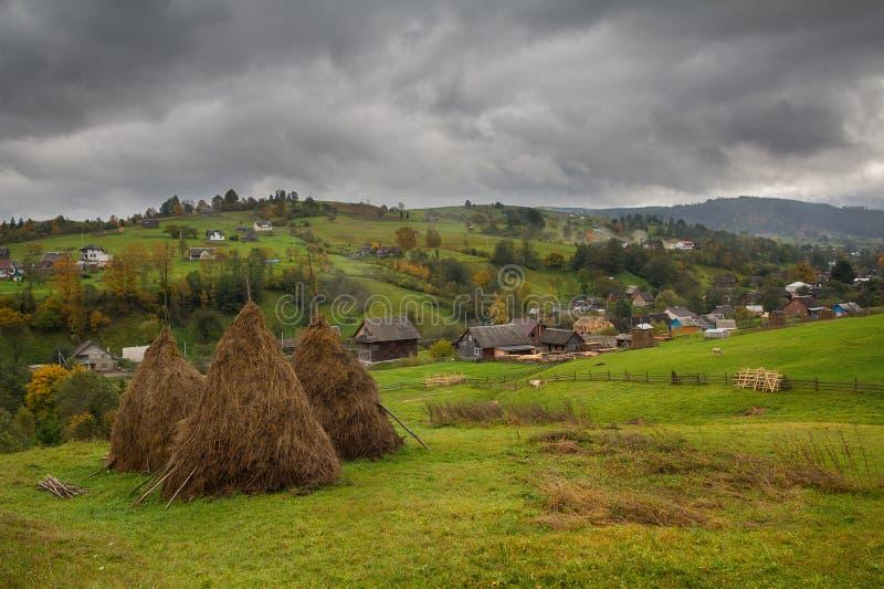 Hö och betakor i en bergby carpathians royaltyfria bilder