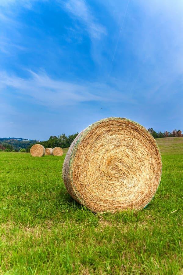Höbal i Tjeckienfält med blå himmel i nedgång Jordbruks- ?ng Lantligt landskap i Tjeckien Mat f?r kor arkivfoto