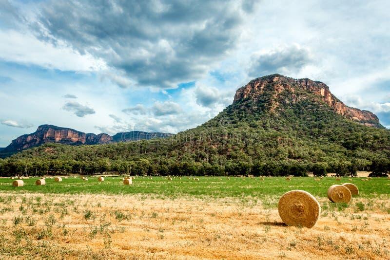 Höbaler i fält i lantliga Australien royaltyfri fotografi