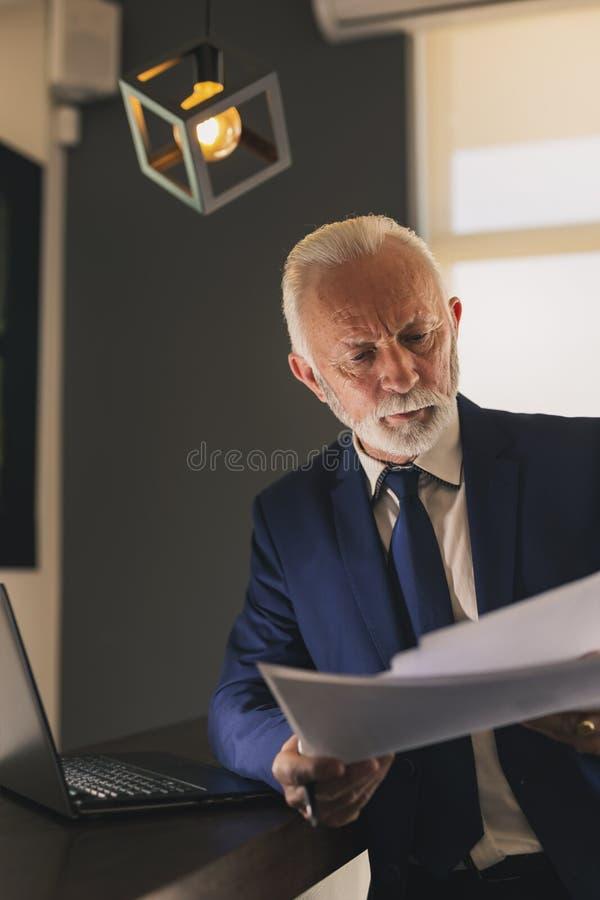Hög affärsman som analyserar dokumentation royaltyfri bild