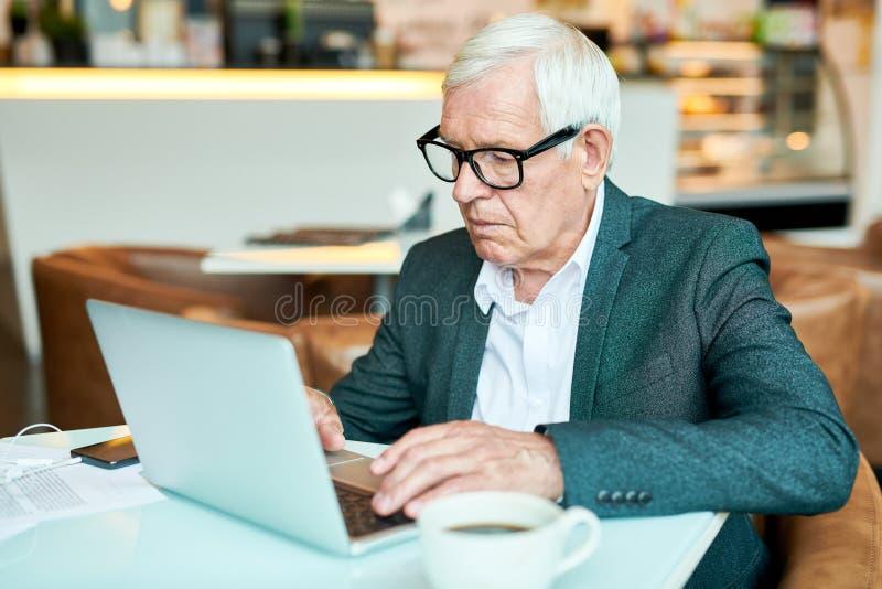 Hög affärsman Using Laptop i kafé arkivbild