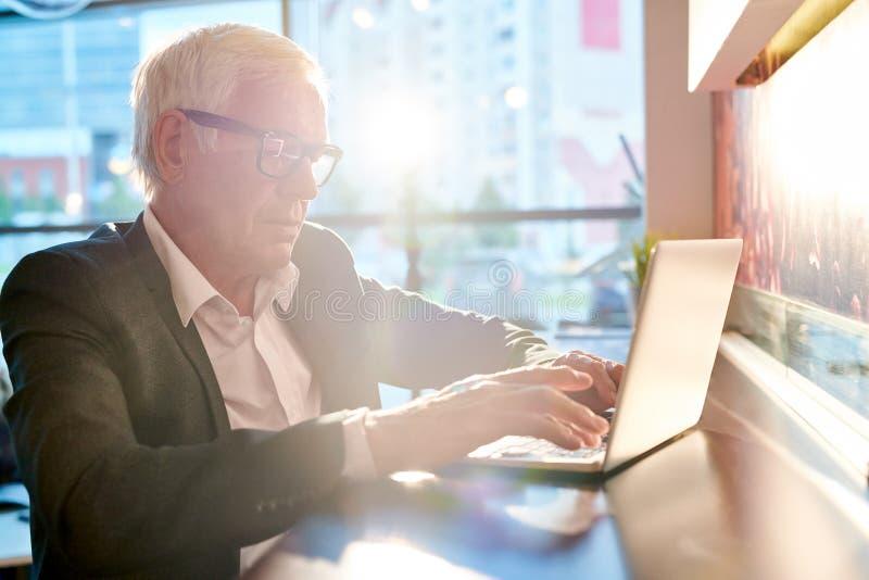 Hög affärsman Using Laptop i solljus arkivfoto
