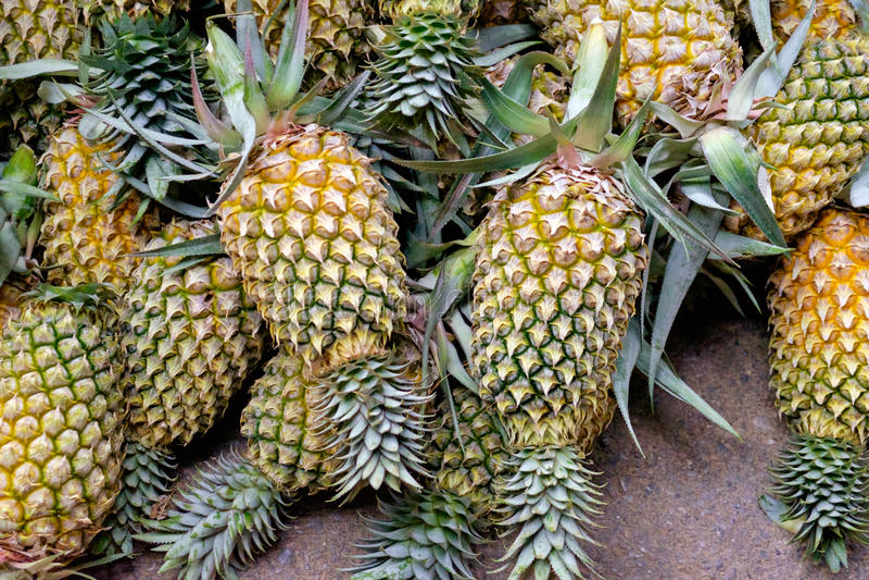 Hög av ananors arkivbild
