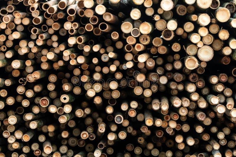 Hög av bambupolen Bunt av runda timmerjournaler Stor gruppering av träjournaler för industriell skala eller tillverkning lager royaltyfria bilder