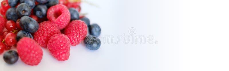 Hög av blandade bär - bärfrukter arkivbild
