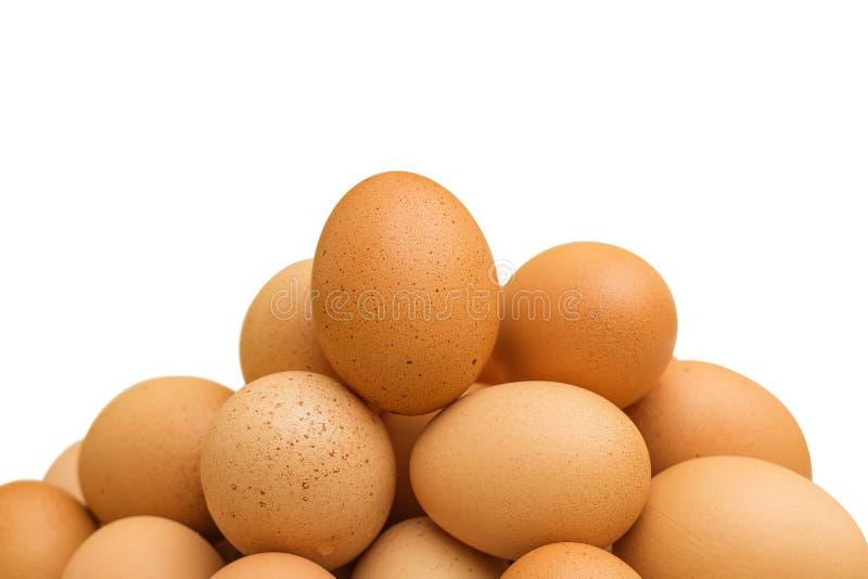 Hög av bruna ägg royaltyfri bild