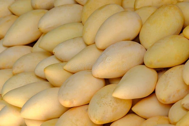 Hög av den gula mango på matmarknad i Thailand arkivbild