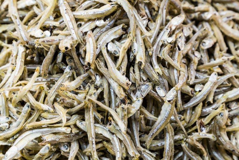 Hög av den torkade och rimmade ansjovisfisken royaltyfri fotografi