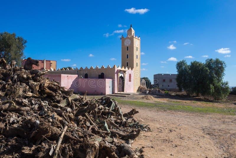 Hög av ett trä och en moské, Marocko arkivbild