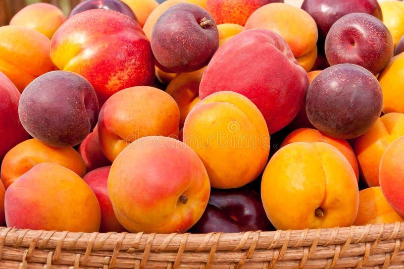 Hög av färgrika sommarfrukter. arkivfoto
