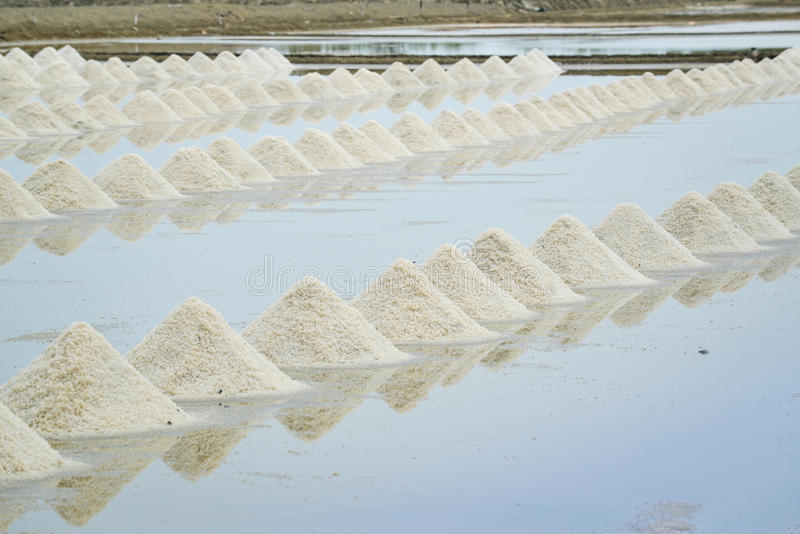 Hög av havet som är salt på den salta lantgården arkivbilder