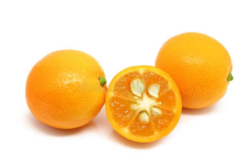 Hög av Kumquats som isoleras på vit arkivbilder