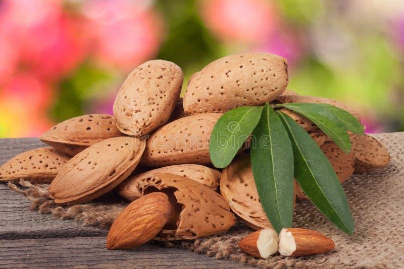 Hög av mandlar i deras hudar med bladet på en suddig trädgårds- bakgrund för trätabell royaltyfria foton