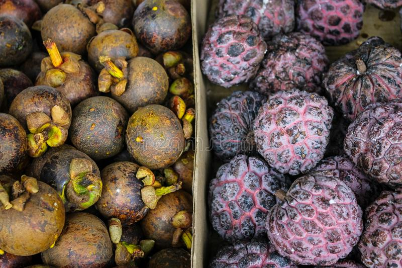 Hög av mangosteen- och Buah Nona royaltyfri fotografi