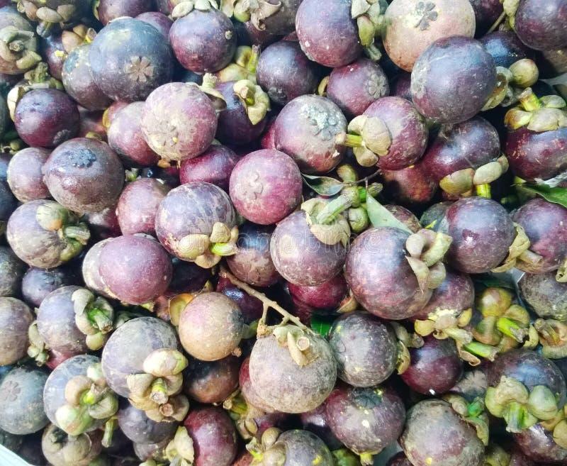 Hög av mangosteenen royaltyfria foton