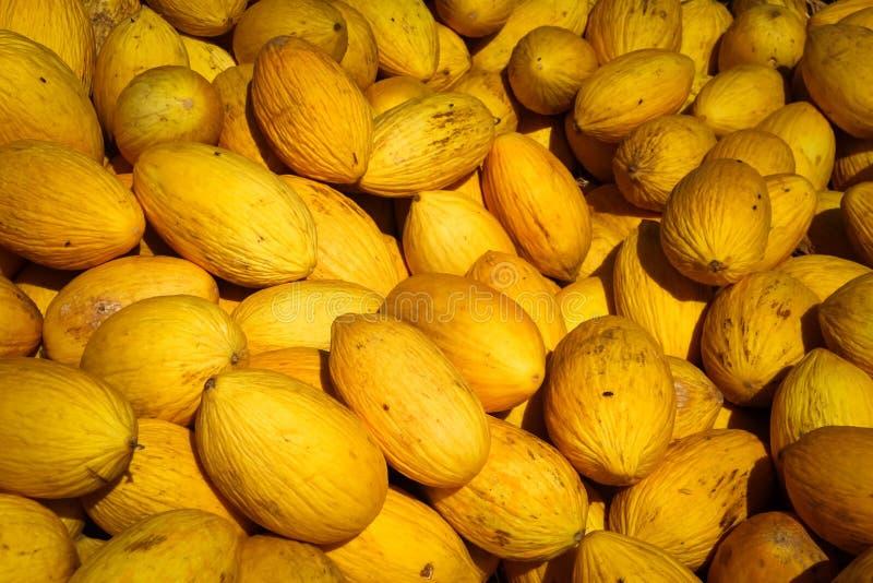 Hög av melon i marknaden royaltyfria bilder