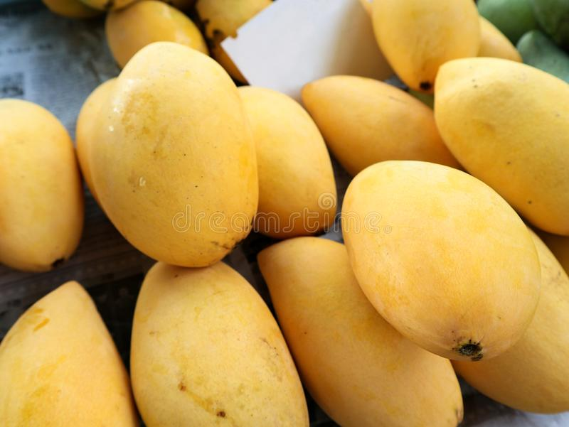 Hög av mogna mango royaltyfri fotografi