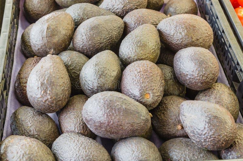 Hög av mogna organiska avokadon på den lokala marknaden i USA royaltyfri foto