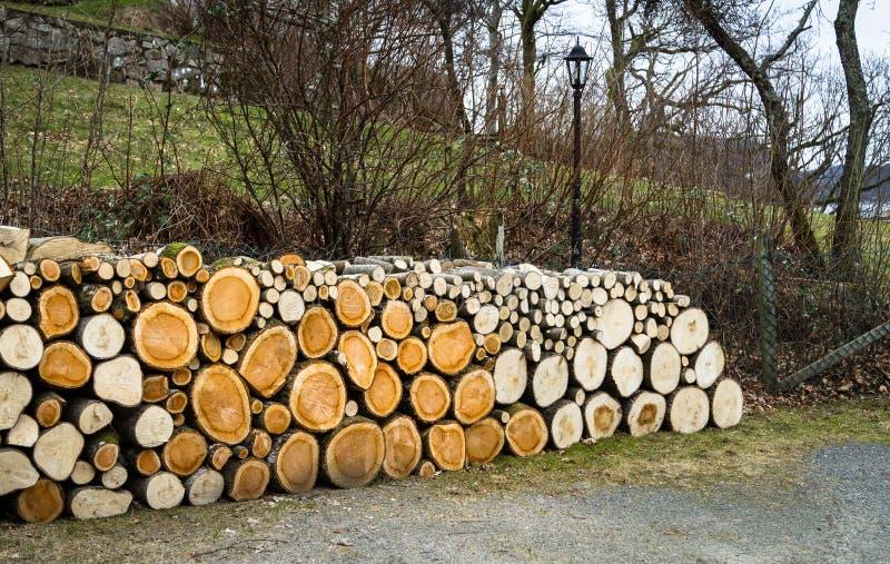 Hög av naturliga träjournaler arkivbild