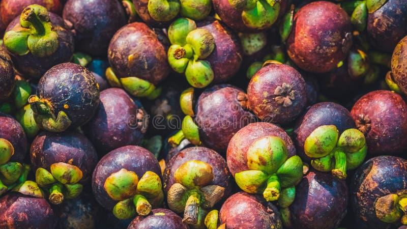 Hög av ny Mangosteenfrukt arkivfoton