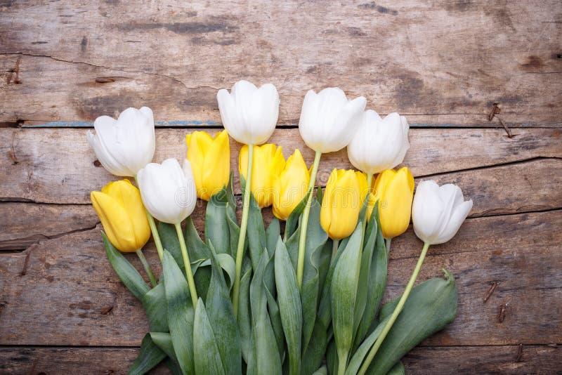 Hög av nya vita och gula tulpan på tabellen royaltyfri fotografi