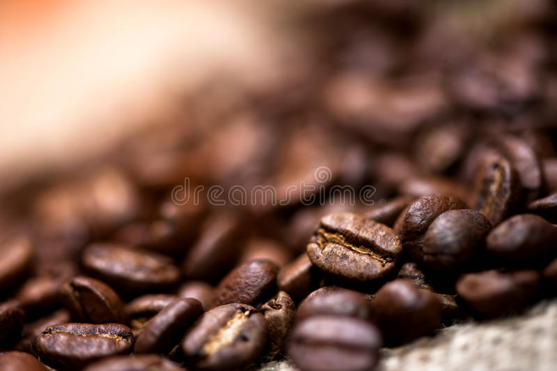 Hög av nytt och bio aromatiskt kaffe royaltyfria bilder