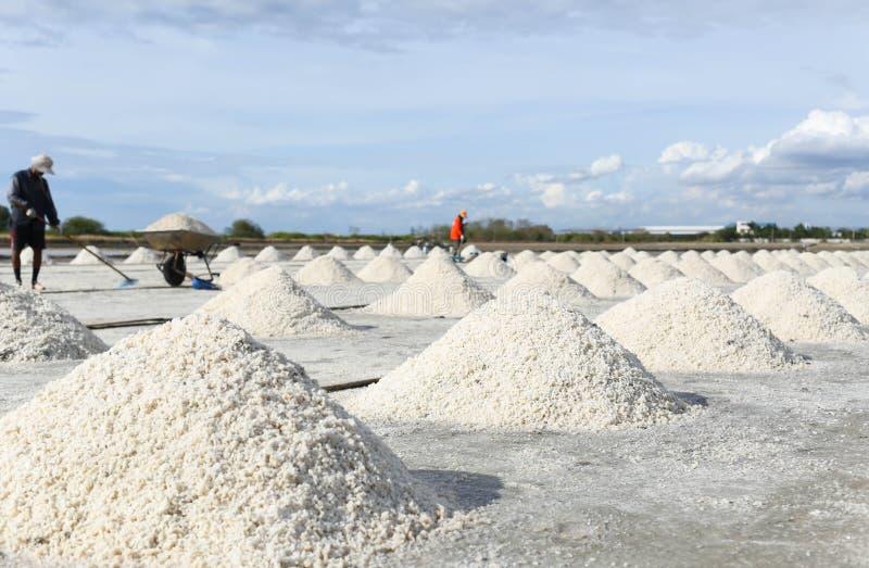 Hög av salt i den salta pannan i Thailand royaltyfria foton