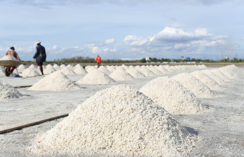 Hög av salt i den salta pannan i Thailand arkivfoto