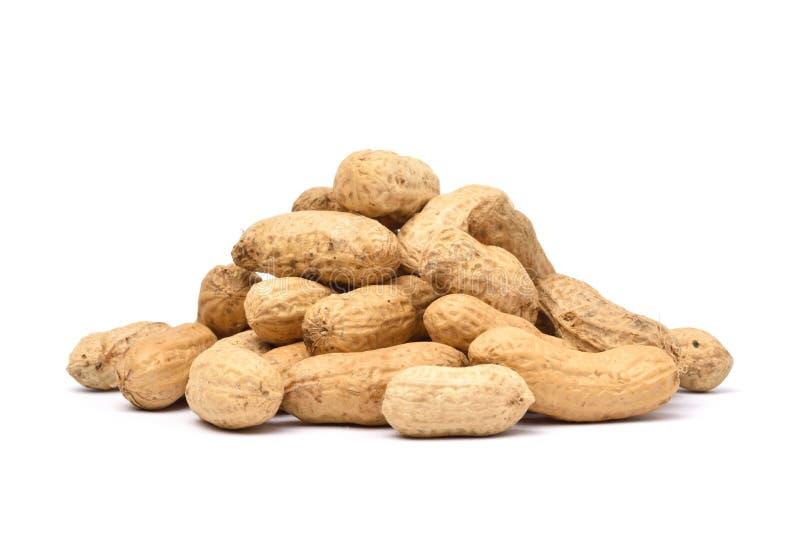 Hög av torkade jordnötter royaltyfri foto