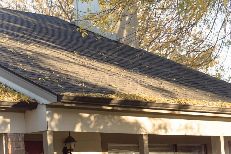 Hög av torkade sidor på stuprännan av det bostads- hemmet i Texas royaltyfri foto