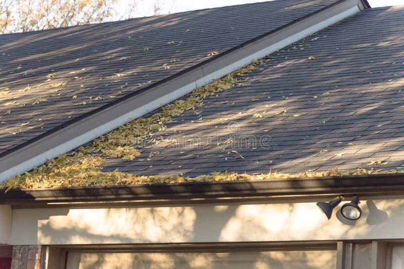 Hög av torkade sidor på stuprännan av det bostads- hemmet i Texas royaltyfri fotografi
