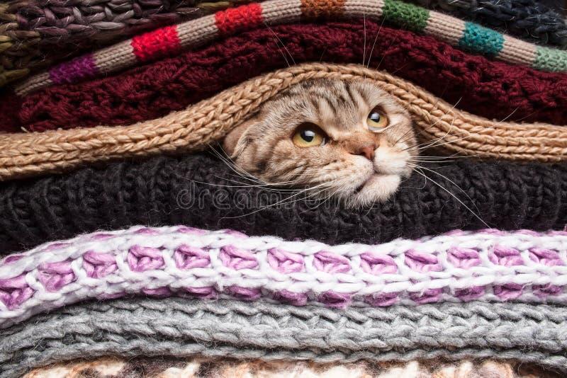Hög av woolen kläder royaltyfria foton
