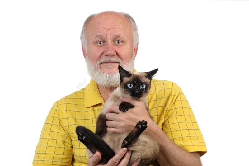 Hög bli skallig man med den siamese katten royaltyfri fotografi